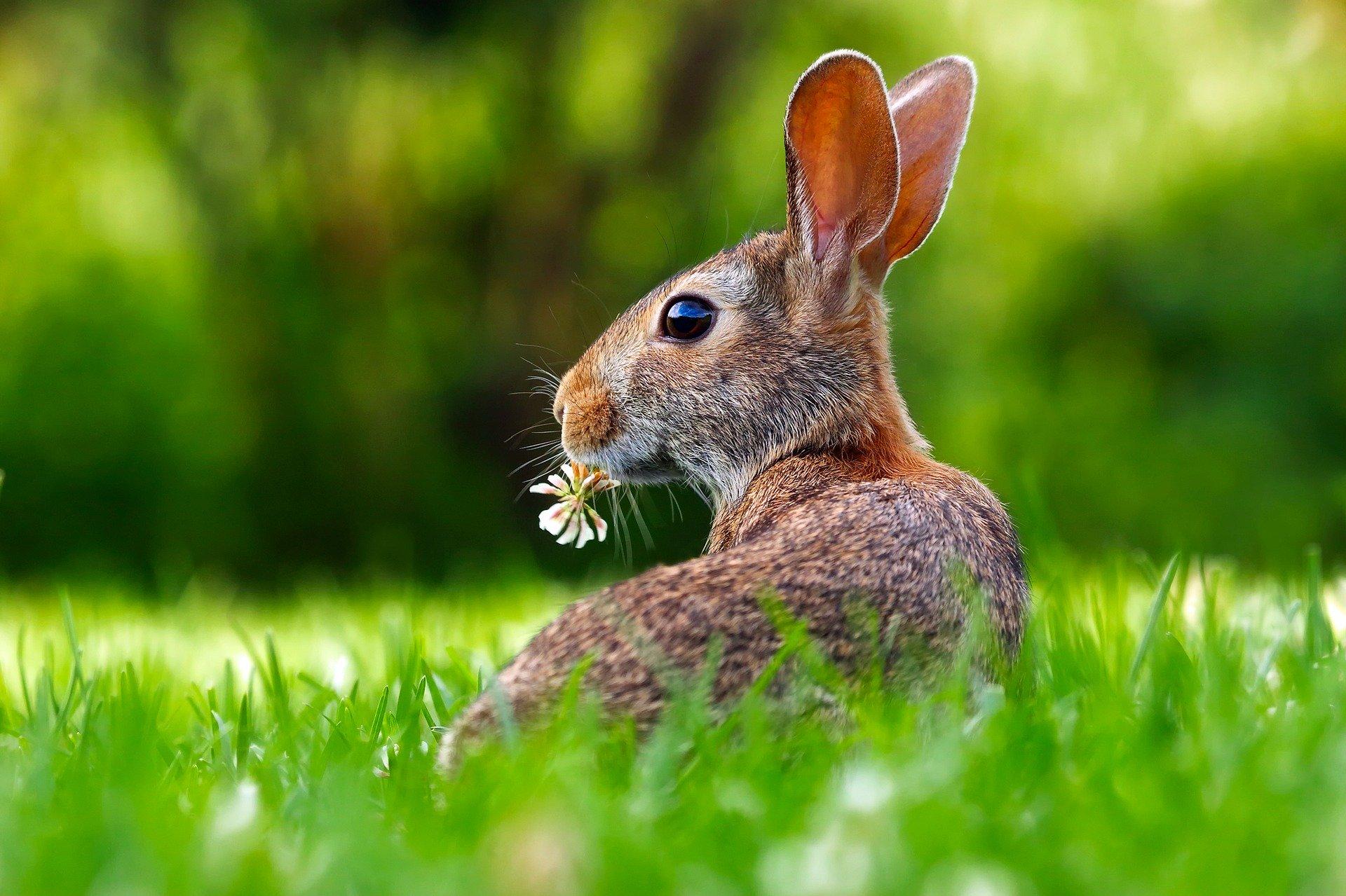 Geänderte Öffungszeiten am Ostersamstag!